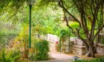 a lovely paved and lushly planted garden area